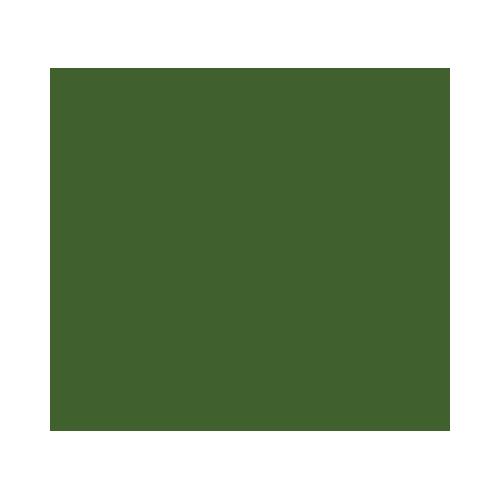 ulivo-secolare